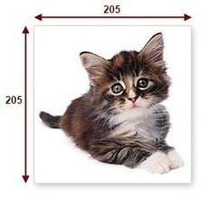 Por qué te interesa tanto saber utilizar bien las fotos e imágenes en Internet | Social Media & Actualidad 2.0 | Scoop.it