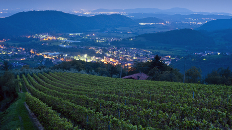 Why You Need To Visit Italy's Secret Sparkling #Wine Region | Route des vins | Scoop.it
