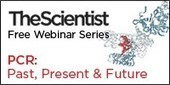 PCR: Past, Present, & Future   Virology News   Scoop.it