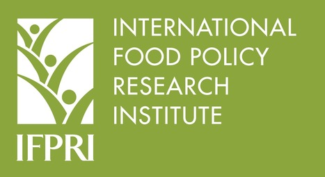 Board of Trustees | Nominations for two Board Members for IFPRI | FTN Global & Overseas | Scoop.it