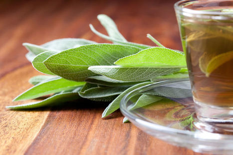What You Need To Know About Sage Tea Health Benefits? | eCellulitis | All About Health & Beauty | Scoop.it