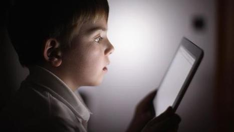 Can schools survive in the age of the web? | Friprogsenteret | Scoop.it