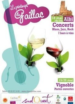 Oenotourisme : les Vins de Gaillac fêtent leur Printemps à Albi - Vitisphere.com   Vin passion   Scoop.it