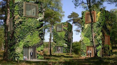 "OAS1S imagines sustainable ""treescraper"" communities | Eco Village | Scoop.it"