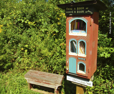 Little Free Libraries | Digital information and public libraries | Scoop.it