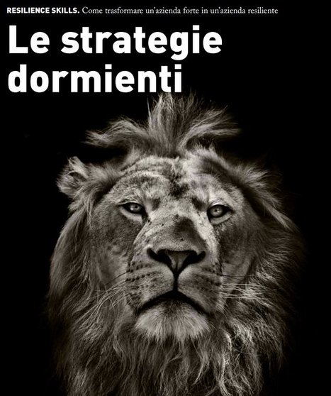 Le stategie dormienti - L'Impresa | Complexity & Self-Organizing Systems | Scoop.it