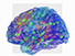 A virtual brain helps decrypt epilepsy - CNRS Web site - CNRS | Medical Simulation | Scoop.it