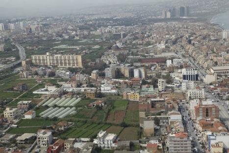 Algérie : un total de 600 milliards de dinars de projets agricoles avec des nationaux et des étrangers | CIHEAM Press Review | Scoop.it