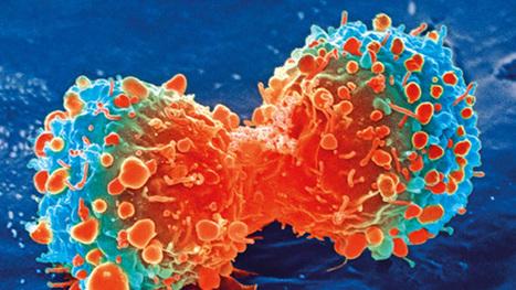 La Chine teste la première thérapie génique anti-cancer de l'histoire | Le pouvoir du transhumanisme | Scoop.it