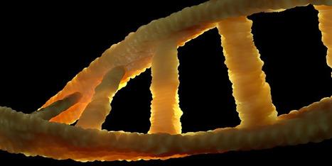 Epigenetic factors linked to obesity-related disease | ESRC press coverage | Scoop.it