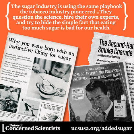 Added Sugar, Subtracted Science: How Industry Obscures Science and Undermines Public Health... | UCSUSA | Information Management, Social Media & Data Security | Scoop.it