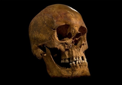 DNA evidence of Richard III | HeritageDaily Archaeology News | Scoop.it