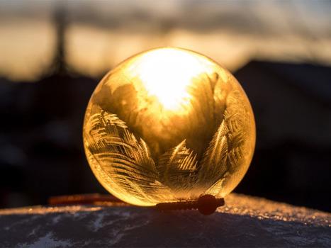 Des scientifiques démontent le mythe des bulles de filtres   Customer Experience, Satisfaction et Fidélité client   Scoop.it
