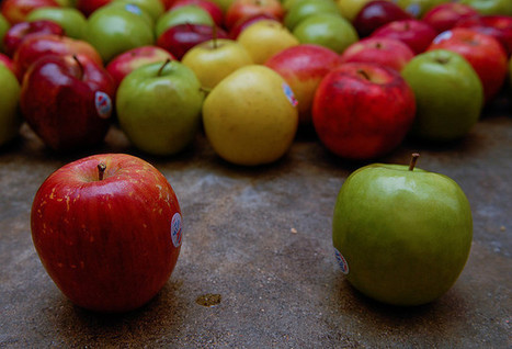 Your Apples Are A Year Old | The Perfect Garden Hose | Scoop.it