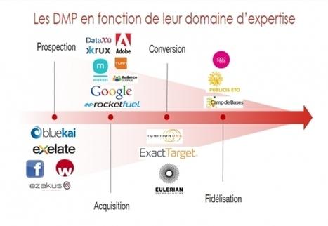 Marketeurs, choisissez bien votre DMP ! | Les Enjeux du Web Marketing | Scoop.it