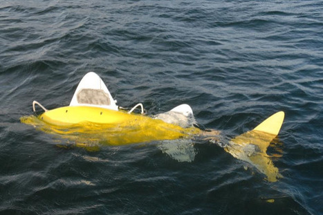 Robotic fish developed to detect pollutants - E & T Magazine | Complex Insight  - Understanding our world | Scoop.it