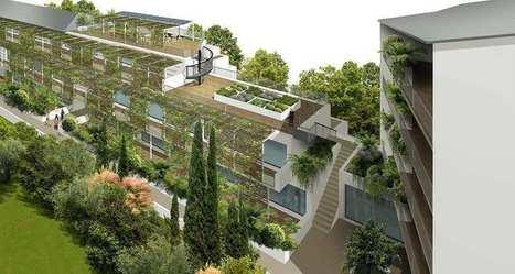 Immobilier : HabX, la plate-forme qui pourrait ubériser les promoteurs | Immobilier | Scoop.it