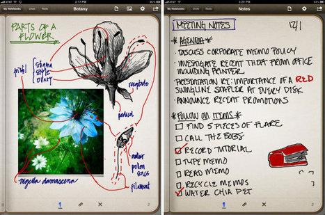15 apps básicas para profesores con iPad | Blog de iDidactic | CALAIX DE SASTRE | Scoop.it