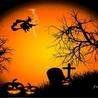 Fond écran animé Halloween