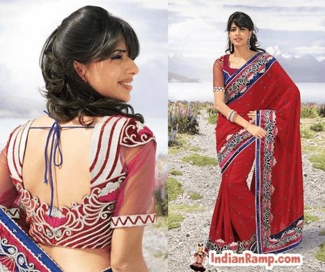Gorgeous Designer Saree Collection, New Blouse Designs Patterns | Indian Ramp | Indian Fashion Updates | Scoop.it