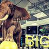 Big Data -Intelligence Artificielle - BlockChain