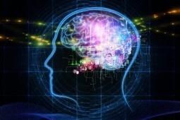 Le neuromarketing du générique – l'effet placébo | le marketing des ... | Le sens de votre vie | Scoop.it