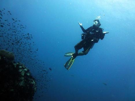 Zero to Hero : Amazing Dive Story | Scuba Diving Adventures | Scoop.it