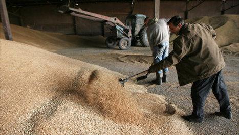La Russie augmente de 48% le financement de l'agroalimentaire | Questions de développement ... | Scoop.it
