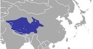 Avian Flu Diary: Sci Rpts: Characterization of Avian H7N2 in Wild Birds and Pikas in Qinghai-Tibet Plateau Area   Influenza   Scoop.it