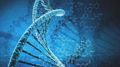 An Overview of the Human Genome Project | Revista digital de Norman Trujillo | Scoop.it