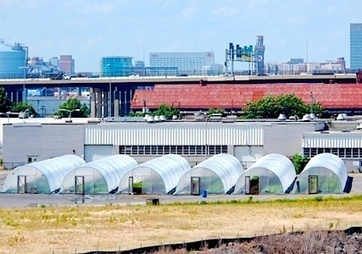 Baltimore-based Urban Farming Co. with Goal of 100 Acres Under Hoop Houses Hopes to Create 600 Jobs | Food andFarming | Vertical Farm - Food Factory | Scoop.it