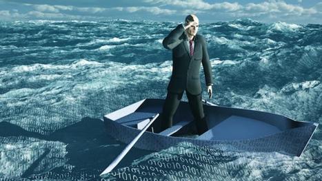 'Big data' y la devaluación del capital humano | Social Media Marketing | Scoop.it