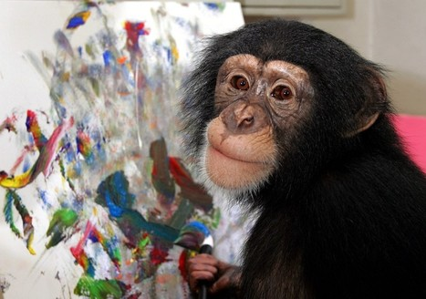 Chimpanzees: Spiritual But Not Religious? | Food for Pets | Scoop.it