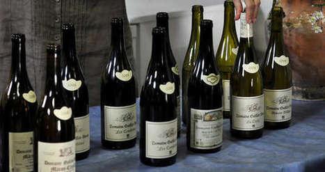 Boissons bio : hausse de 17 % en 2013 | Agro Media.fr | Actu Boulangerie Patisserie Restauration Traiteur | Scoop.it