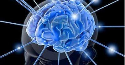 Autisme : des chercheurs expliquent comment la maladie affecte le cerveau | Aidants familiaux | Scoop.it