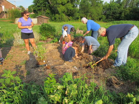 Spring Hill Library Sponsors Community Garden Project | Spring Hill Fresh-A Fresh, New Voice in Spring Hill, TN | Tennessee Libraries | Scoop.it