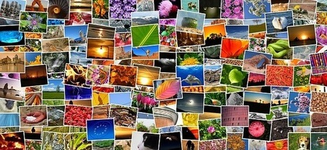 Online photo albums: Where to host them for free | Moodle and Web 2.0 | Scoop.it