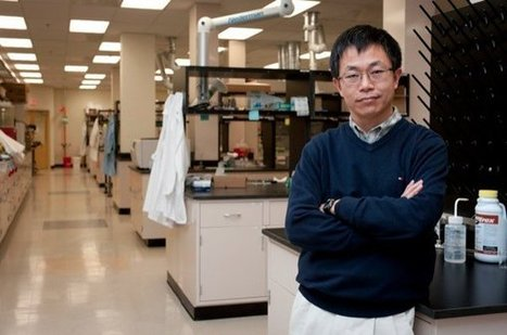 Inexpensive catalyst to produce oxygen and hydrogen from water | UtopianDynamics | Scoop.it