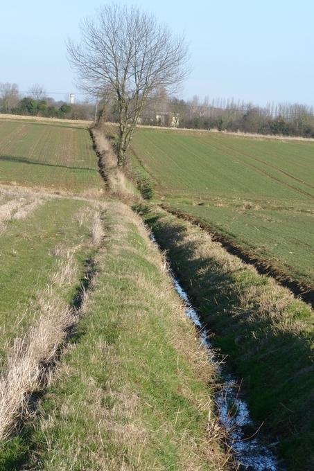 Chemins et routes de traverse | The Blog's Revue by OlivierSC | Scoop.it