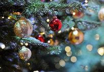 La douceur des chants de Noël | allemagne musique | Scoop.it