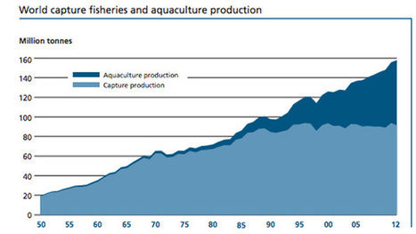 We're fishing the oceans dry. It's time to reconsider fish farms. | Aquaculture | Scoop.it