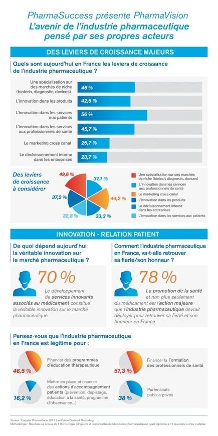 Intéressant cette étude sur 114 managers de l'industrie #pharma !! #hcsmeufr #services #décloisonner #multicanal | L'actualité Industrie Pharma | Scoop.it