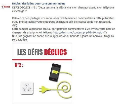 DÉFI DÉCLICS n°2 | DECLICS | L'expérience consommateurs dans l'efficience énergétique | Scoop.it
