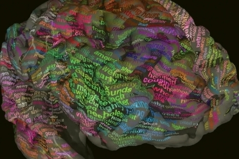 Where Words are Stored: The Brain's Meaning Map | ADQUISICIÓN DE SEGUNDAS LENGUAS-SECOND LANGUAGE ADQUISITION | Scoop.it