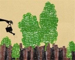 Istat: Ambiente urbano, gestione ecocompatibile e smartness   landscape architecture & sustainability   Scoop.it