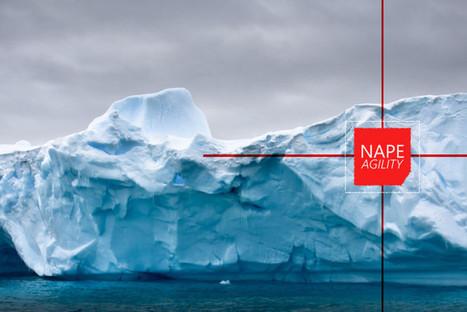 TRANSFORMATIONS DES ORGANISATIONS : POSTURES ET AGILITE DANS UN CHAMP D'ICEBERGS – NAPE AGILITY | Complémentarité Qualité et Contrôle Interne | Scoop.it