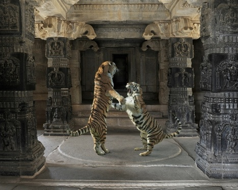 India Song | Fine art photographer: Karen Knorr | PHOTOGRAPHERS | Scoop.it