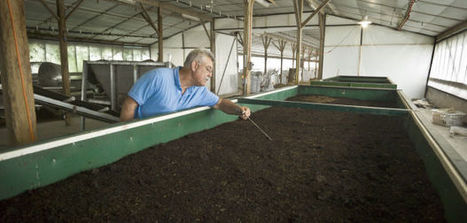 'Casting' call: At Sunrise Farm, activity is just below the surface | North Carolina Agriculture | Scoop.it