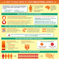 How to Make Sense of Your Cholesterol Level Infographic | Rediscovering Wellness | Scoop.it