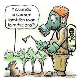 Receta para reducir pesticidas de frutas y verduras - | Alimentación y Calidad de Vida | Scoop.it